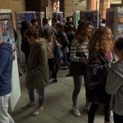 Mostra Cortile d'Onore 4
